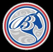 Brigitteboss.nl